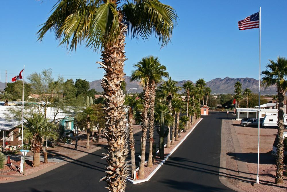 There's plenty of space in our Big-Rig Friendly RV Park in Apache Junction, AZ